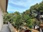 House with garden (528 m2) and additional building land of 528 m2 - Ugljan, Island Ugljan